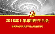 普天药械网党支部召开2018年上半年组织生活会