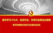 普天药械网党支部召开2月主题党日活动