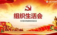 普天药械网党支部召开主题党日组织生活会