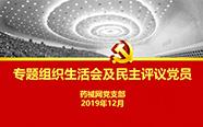 药械网党支部召开2019年主题教育专题组织生活会